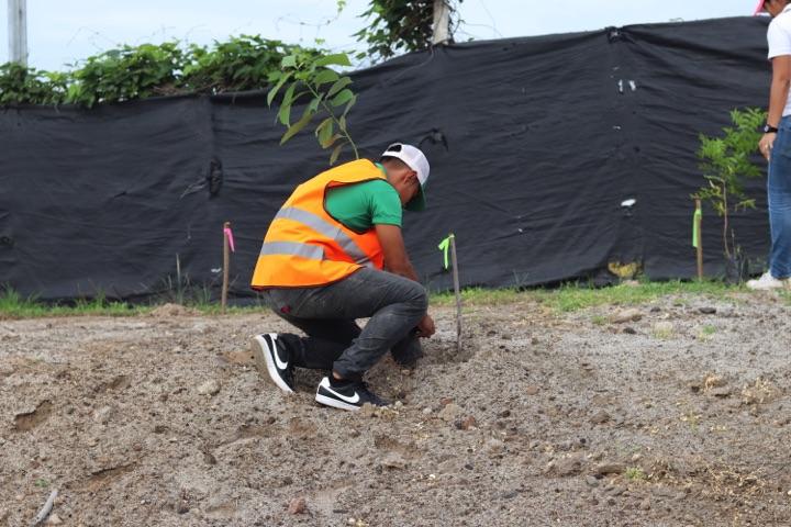 reforestacion-prococle_7213