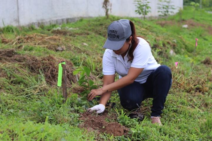 reforestacion-prococle_7271